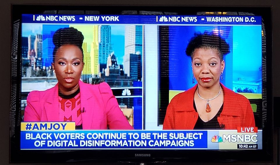 "Pictures of Joy Reid and Shireen Mitchell, with a chyron on the bottom saying ""#AMJOY: Black Voters continue to be the target of digital disinformation campaigns"" and the MSNBC logo"